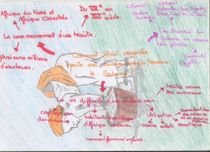 Carte  heuristique Traite transsaharienne Inès B