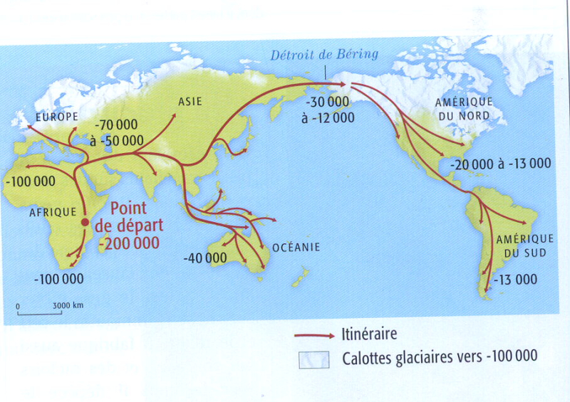 Carte migration Homos Sapiens