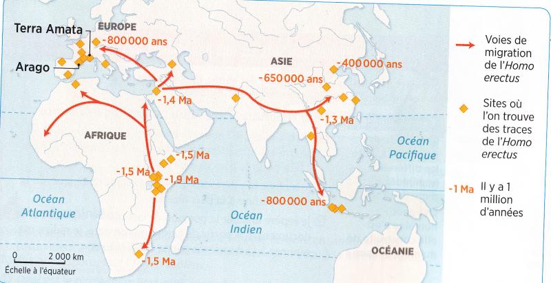 Carte migrations homo erectus